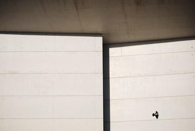 juan-antonio-navaridas-curso-fotografia-vitoria