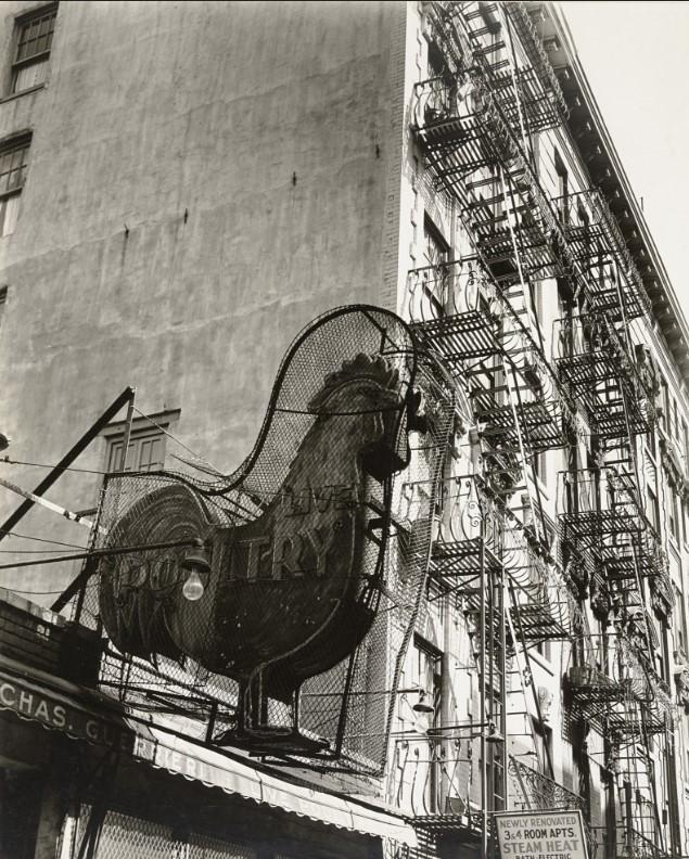 fotografa-berenice-abbott-lower-east-side-newyork